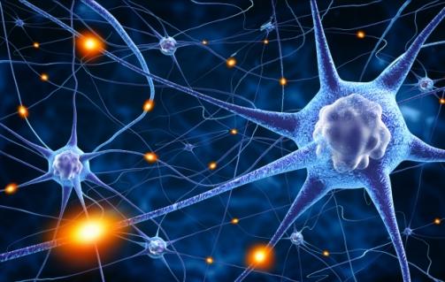 III Jornada de Fisioterapia Neurológica da Unicatólica de Quixadá