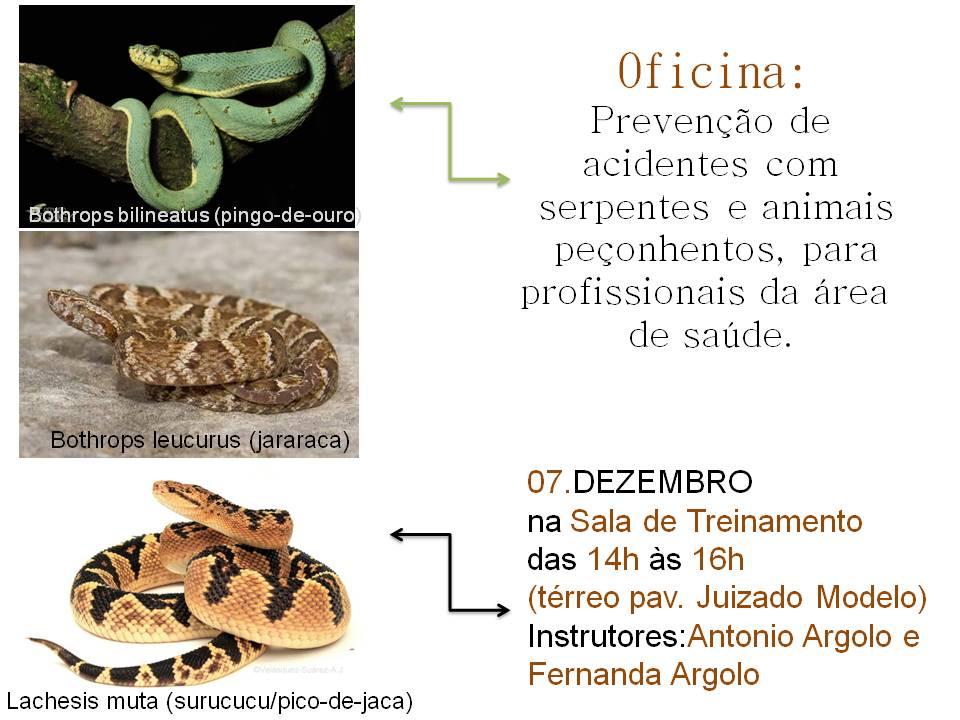 Oficina - Prevenção de  acidentes com  serpentes e animais  peçonhentos, para profissionais da área  de saúde.