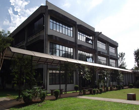 Biblioteca Florestan Fernandes: Visita Guiada - Dedalus - Serviços oferecidos