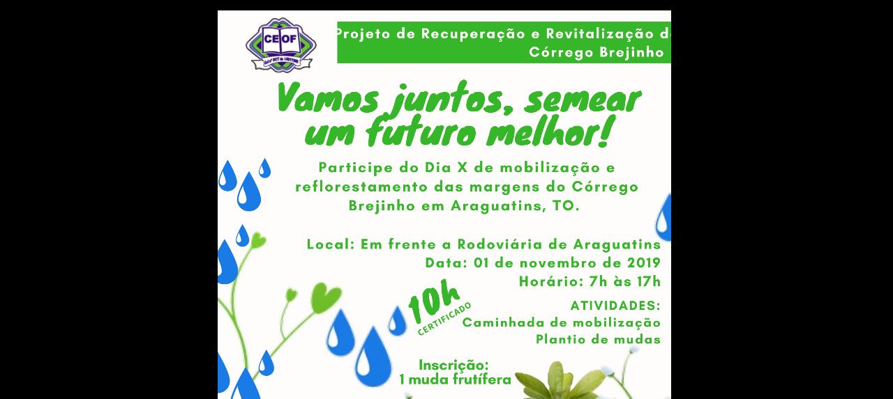 Dia X de Mobilização e Reflorestamento das Margens do Córrego Brejinho em Araguatins, TO.