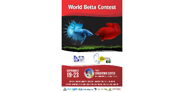 World Betta Contest